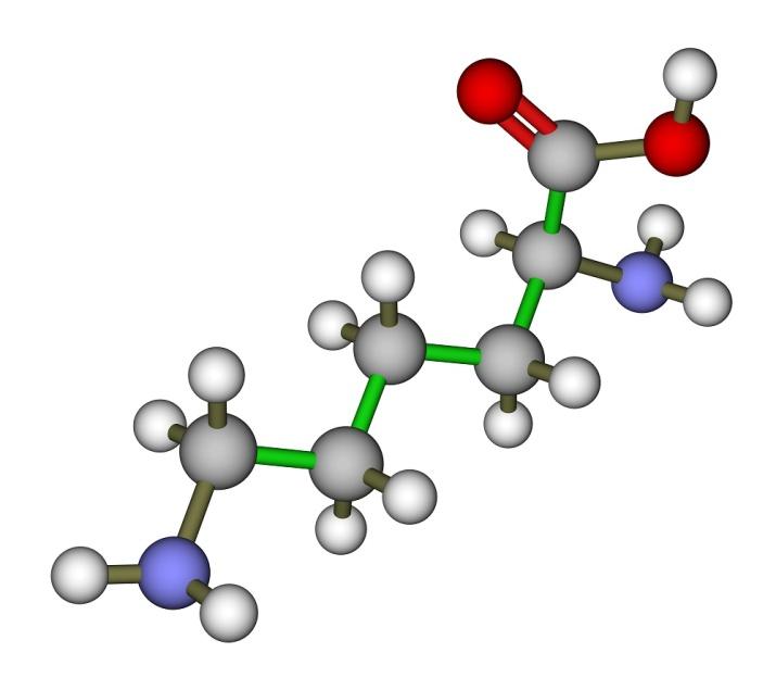 Det er mye protein-aminosyrer-vegetarmat fra planteriket